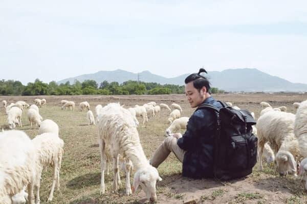 Sao Việt cũng mê mẩn những em cừu ở Đồi Cừu Suối Nghệ